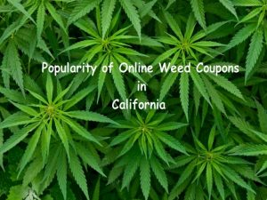 Popularity of Online Weed Coupons in California