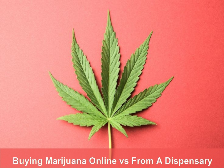 Buying Marijuana Online or From A Dispensary